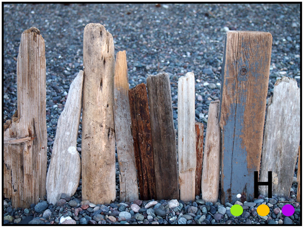 details on the beach, gowlland point, pender island, bc