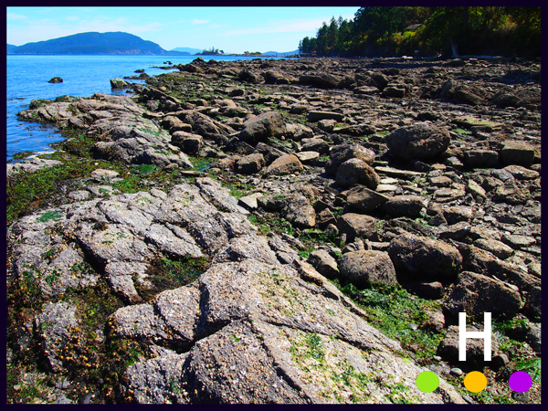 tracy road beach access, pender island, bc, canada